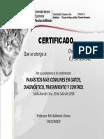 Certificado Christian