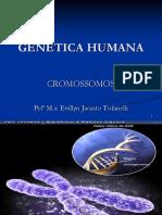 CROMOSSOMOS2 (1)