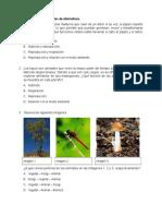 prueba  Ciencias naturales quinto basico