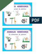 Guía clasificación de vertebrados