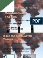 combustveisfsseisfinal-091215075132-phpapp01