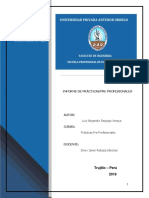 Informe Final de Practicas Luis (Autoguardado)