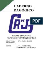 1_5177169478567329820 registro pedagigoco.docx