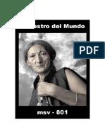 (msv-801) El Rostro Del Mundo