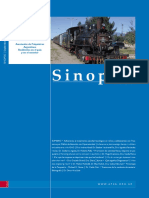 sinopsis0910.pdf