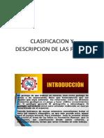 Clasificacion y Descripcion de Las Fallas