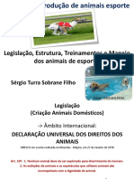 Sistema de Produção de Animais Esporte