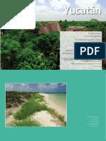Los Paisajes de Las Playas y Dunas Yucatan