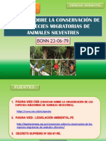 CONVENIO DE BONN- JESSI.pptx