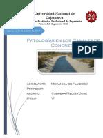 Patologias Fluidos II