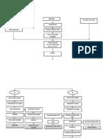 WEB OF CAUSATION fix.docx