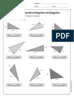 area de triangulos rectangulos.pdf
