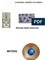 Citogenetica 3.ppt