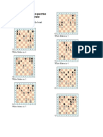 60 Chess Puzzles by Bent Larsen