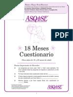 18 Meses Cuestionario