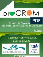 XXX10-presentacion-biocrom-dr-baron1.pdf