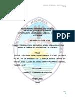 ANTEPROYECTO-DE-TESIS-MIRELLA-2018 (22)-CORREGIDO-2