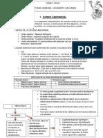 Resumen Abdomen Anato Atlas