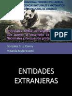Entidades Extranjeras y Peruanas