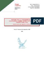 estudio-de-super-catalyzer-para-gas-universidad-de-cluj.pdf