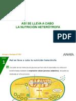 6-4-_Nutri_heterotrofa
