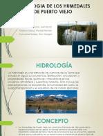 Hidrologia Puerto Viejo Cañete