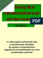 Biologia PPT - Aberrações Cromossômicas Estruturais