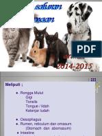 Patologi R. MULUT - 2- 2014