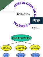 Biologia PPT - Botânica - Morfologia da Célula