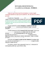 Schita Argumentare Text La Prima Vedere