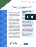 Depression Pregnancy Postpartum Executive