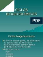 Biologia PPT - Ciclos Bioquímicos