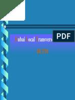 DLTM_coordinate_system.pdf