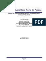 trabalho_Robledo-microondas