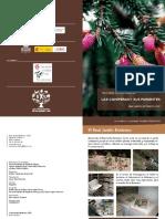 LasConiferasysusParientes.pdf