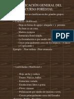 Presentación(Estructura y P.fisicas)