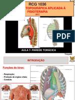 Anatomia I FML [Osteologia (Resumo)] Tiago Tomás