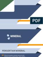 Tugas Mineral Biokimia