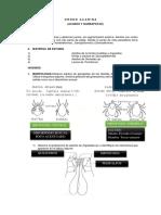 Práctica 14 - Orthoptera, Acaros, Garrapatas y Aracnidos