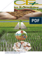20th ,2018 Daily Global Regional Local Rice E-Newlsetter