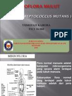 Yusrifah Kabora Tugas 2 Mikroflora Mulut - -1