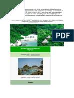 El Parque Tayrona Se Encuentra Ubicado a 34 Km de Santa Marta en El Departamento Del Magdalena y Es Uno Los Parques Naturales Más Importantes de Colombia
