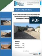 ESTUDIO DE IMPACTO AMBIETAL.docx