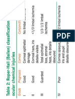 Criteria Ocular chemical injury.pdf