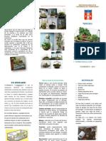 vdocuments.mx_triptico-terrario-2015docx.docx