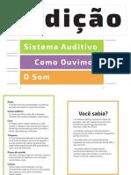 Cartaz Audição