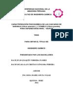 Julio Tesis Título 2014