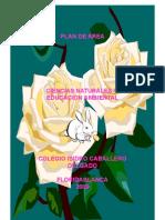 experimentos y plan de area.doc