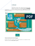 Las fases del ciclo del agua.docx