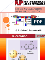 Biosíntesis de Nucleótidos Procesos de Regulación Clase 2